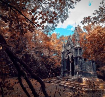 Alla scoperta di Torre Alfina : storia e mistero